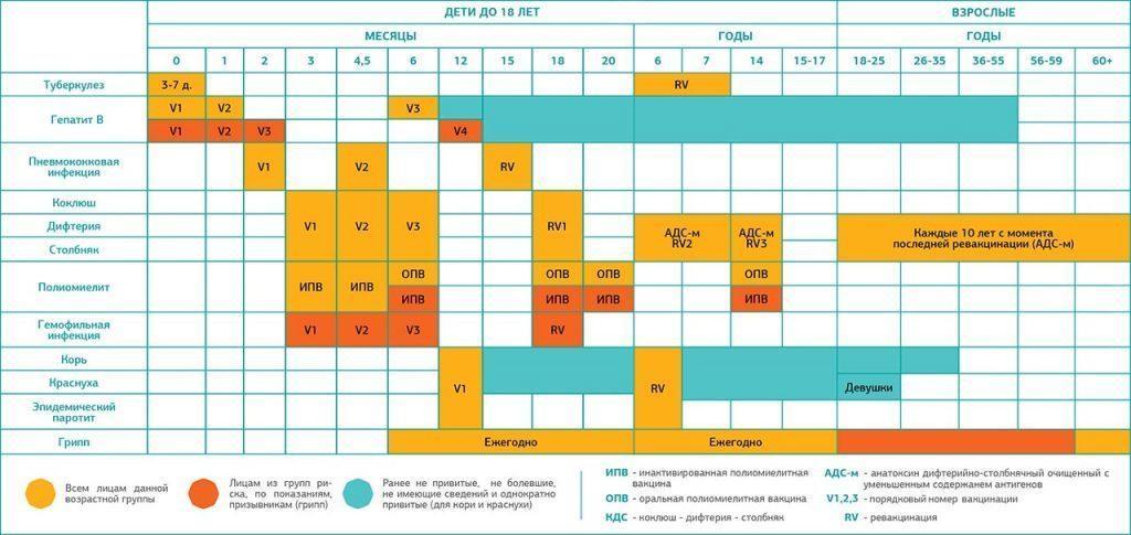 Календарь прививок 2016